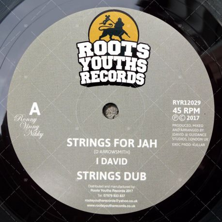 I David - Strings For Jah