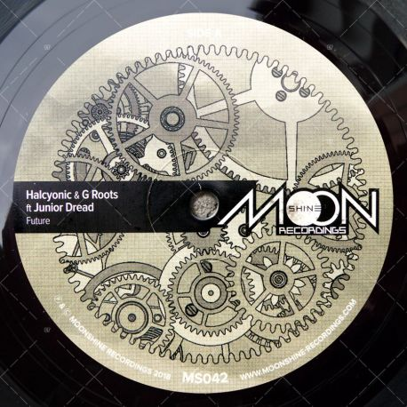 Halcyonic & G Roots feat. Junior Dread - Future
