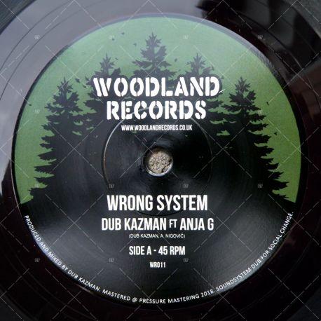 Dub Kazman feat. Anja G - Wrong System