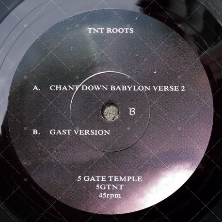 TNT Roots - Chant Down Babylon Verse 2