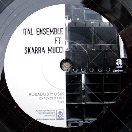 Skarra Mucci feat Ital Ensemble - Rubadub Muzik