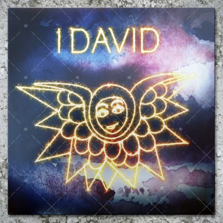I David - Nyah Chant / Safe Journey