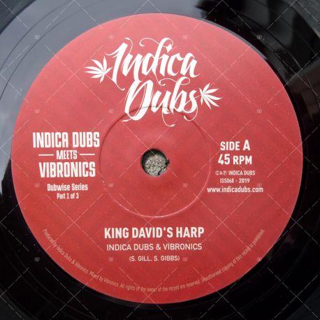 Indica Dubs meets Vibronics - King David's Harp