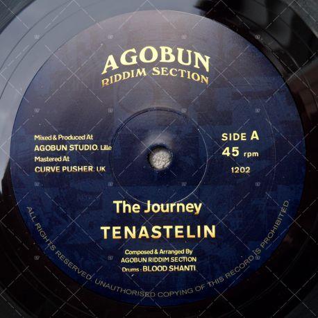 Tena Stelin - The Journey
